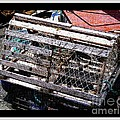 Old Wooden Lobster Pot by Barbara Griffin