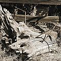 Old Wooden Stump Wit Iron In Sepia 3010.01 by M K Miller