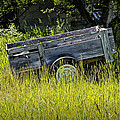 Old Wooden Wagon by Randall Nyhof