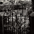 Olde Victorian Gate Leading To A Secret Garden - Peak District - England by Doc Braham