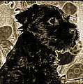 Olde World Canine by Brian Graybill