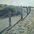Olde Worlde Beach by Jocelyn Friis