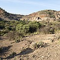 Olduvai Gorge Landscape, Tanzania by Science Photo Library