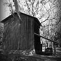 Ole Tobacco Barn I by Sheri McLeroy