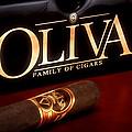 Oliva Cigar Still Life by Tom Mc Nemar