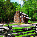 Oliver Cabin 1820s by David Lee Thompson
