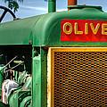Oliver by Guy Harnett