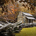 Oliver's Log Cabin During Fall In The Great Smoky Mountains by Randall Nyhof