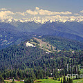 Olympic National Park Landscape by Bob Phillips
