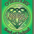 O'malley Soul Of Ireland by Ireland Calling
