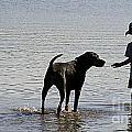 On A Beach 2 by Ben Yassa
