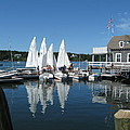 On A Beautiful Maine Summer Morning On The Island Of North Havenjunior Sailing Participants Rig Sailboats by Downeast Yacht Shots- Ted Fisher Photography