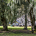 On Destrehan Plantation by Kathleen K Parker