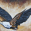 On Eagle's Wings by Ilse Kleyn