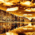 On Golden Pond by David Patterson