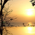On Golden Pond by Kaye Menner