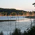 On Golden Pond by Linda Kerkau