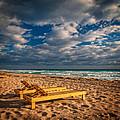On Golden Sands by Lynn Bauer