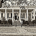 On Guard In New Orleans Sepia by Steve Harrington