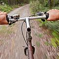 On My Mountain Bike by Stephan Pietzko