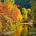 On Nason Creek by Winston Rockwell