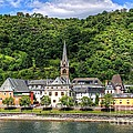 On The Banks Of The Rhine  by Ines Bolasini