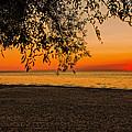 On The Beach by Jim Markiewicz