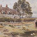 On The Common Hambledon Surrey by Myles Birket Foster