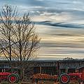 On The Farm by Richard Bean