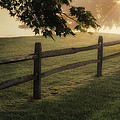 On The Fence by Bill Wakeley