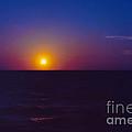 On The Horizon by Anita Lewis