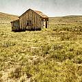 On The Prairie by Margie Hurwich