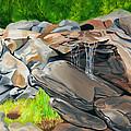 On The Rocks by Annette M Stevenson