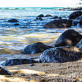 On The Rocks by Suzanne Luft