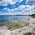 On The Shores Of Yellowstone Lake by Fran Riley