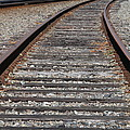 On The Tracks by Michael Merry