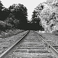 On The Tracks  by Neal Eslinger