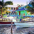 On The Waterfront Caye Caulker Belize by Lee Vanderwalker