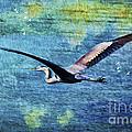 On The Wings Of Blue by Deborah Benoit