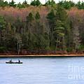 On Walden Pond by Jayne Carney
