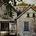 Once Lived In by Margie Hurwich