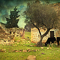 Once Upon A Time In Phokaia  by Taylan Apukovska