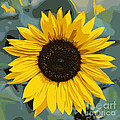 One Bright Sunflower - Digital Art by Carol Groenen