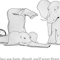 One Elephant Says To Another Elephant Who by Charlie Hankin
