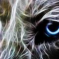 One Eye by Aged Pixel
