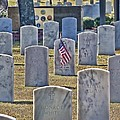 One Lonely Flag by Victor Montgomery