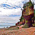One Side Of Flowerpots At Hopewell Rocks-new Brunswick  by Ruth Hager
