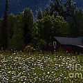 One Starry Summer Night by RC DeWinter