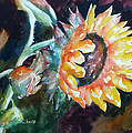 One Sunflower by Carolyn Jarvis