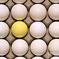 One Yellow Egg With White Eggs by Jim Corwin